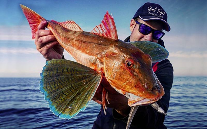 Tailor-made Fishing Trips San Sebastian